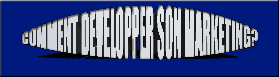 COMMENT DEVELOPPER SON MARKETING